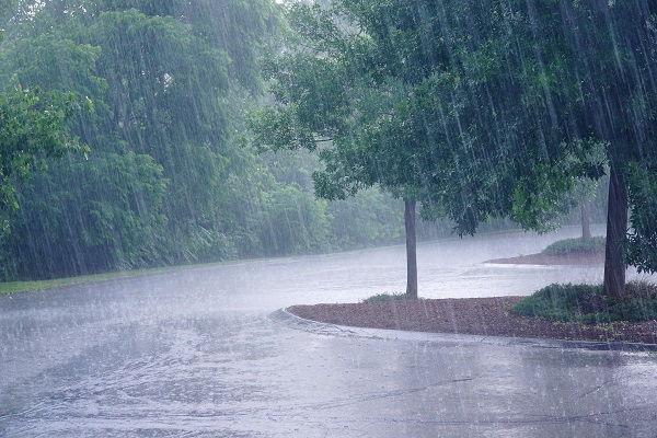 Rainfall Roofing