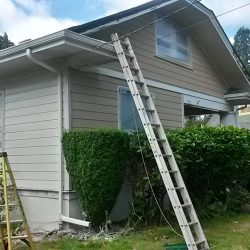 Siding Contractor Portland Evo Siding116